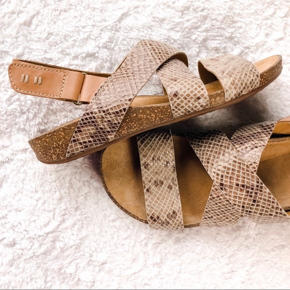 01161c27700e Clarks Shoes - CLARKS ARTISAN • Perri Snakeskin Leather Sandals